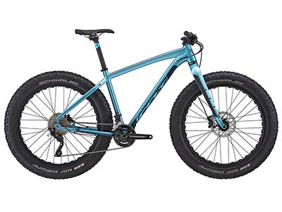 Felt Fat Bike DD30