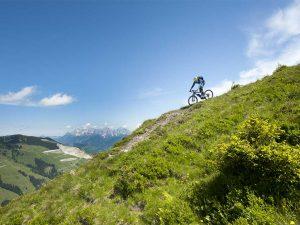 FELT Mountainbike Downhill e-Bike