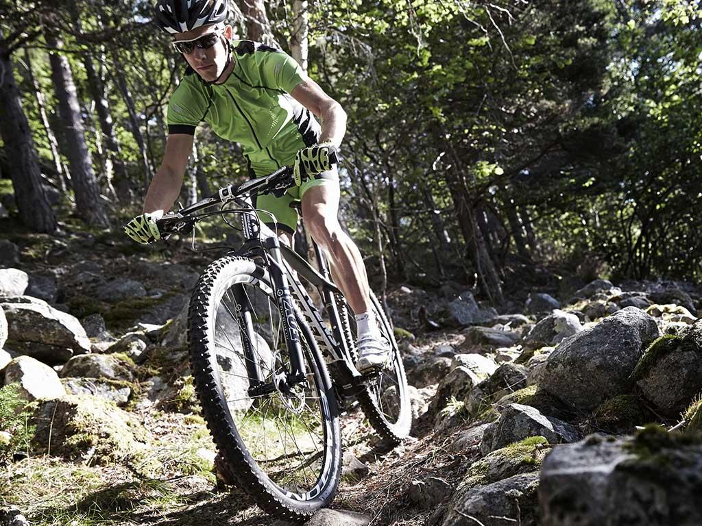 Mountainbikes Hardtails
